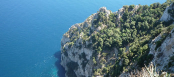 Holidays in Capri, the Faraglioni island