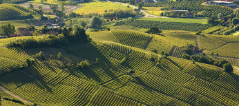 Italian wine regions, an itinerary for wine lovers