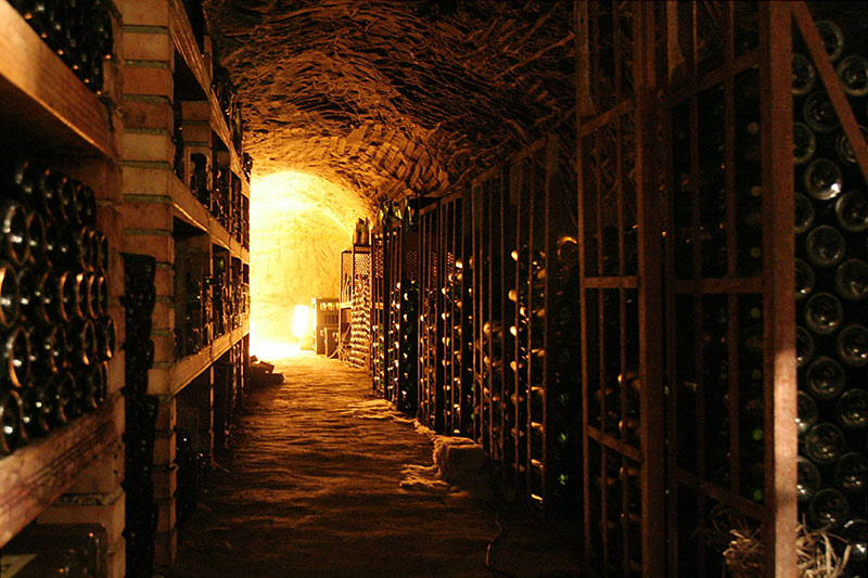 Top White Wine Routes in Friuli