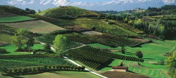 Langhe travel guide