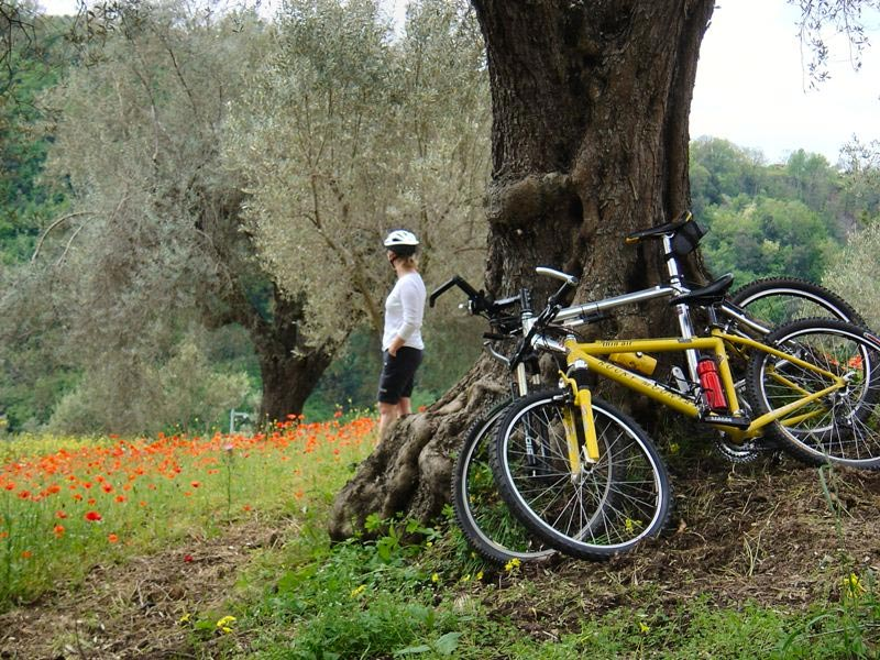 Mountain bike a Capo Vaticano